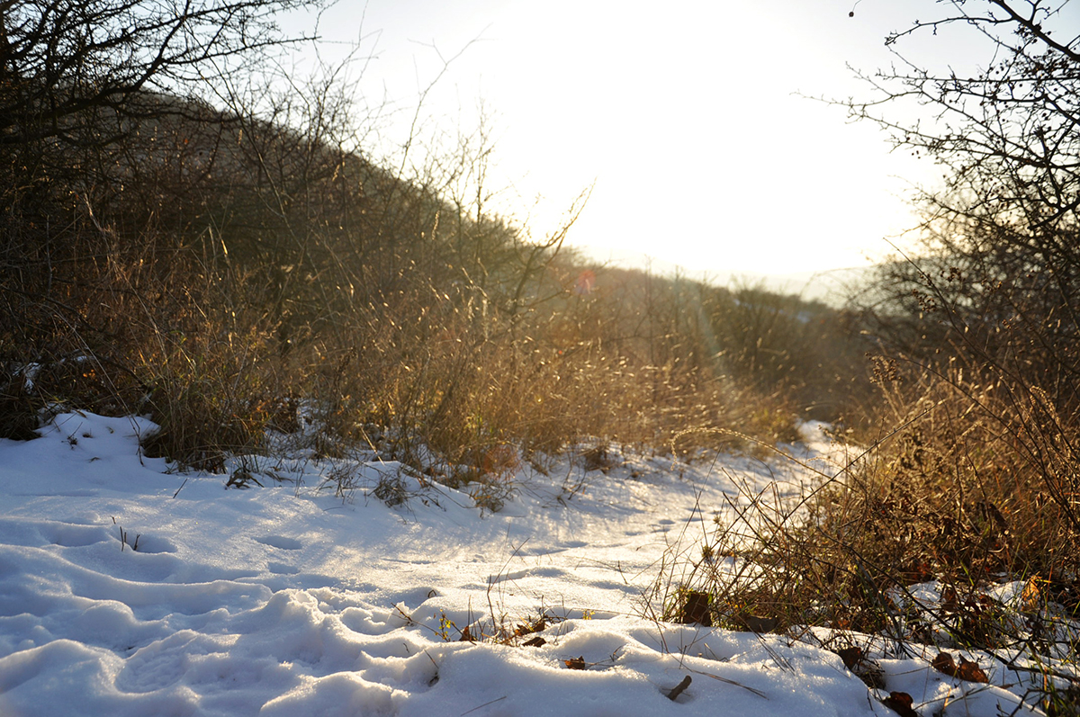 A főváros környékén az esőt fokozatosan havazás váltja fel. Egyre hidegebb  lesz. a hétvégén éjszaka mínusz 10 fok is lehet. 4d0581cb1b