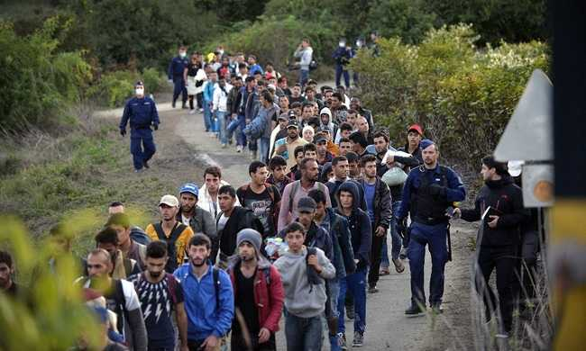 1,5 millió menedékkérővel számol a német kormány