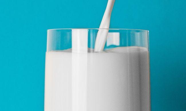 Lecsapott a hatóság a szlovák tejre