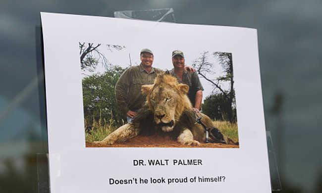 Megúszhatja az oroszlángyilkos fogorvos