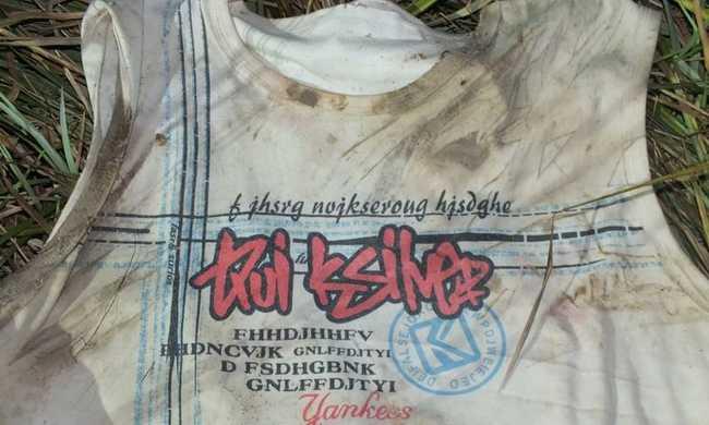 Ismeretlen tetovált férfi holttestét találták a nádasban Fehérváron