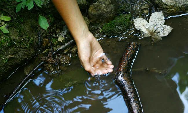 Létezik egy folyó, amelyiknek forr a vize