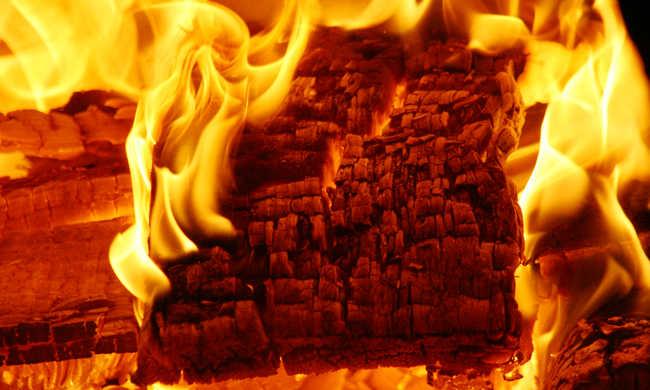 A hőség miatt veszélyben vannak az erdők - így előzhető meg a tűz