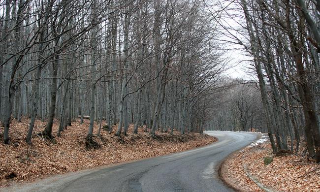 Javulhat az utak állapota, milliárdokat költhetnek felújításra