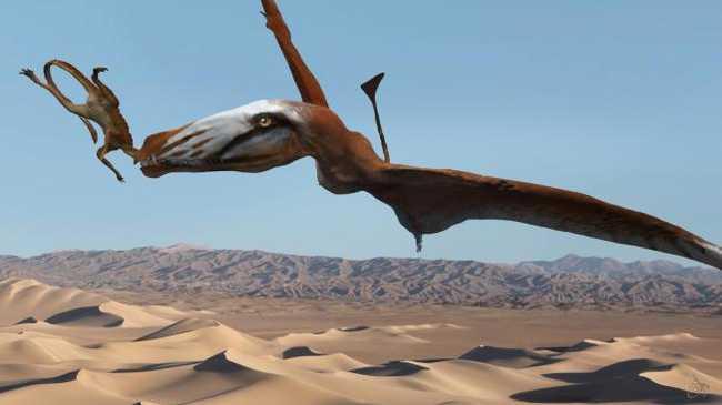 210 millió éves repülő gyík a sivatagban