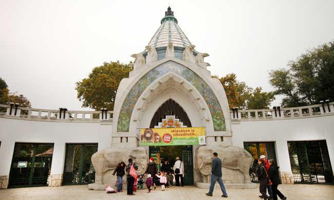 Világító lampionok lepik el az állatkertet