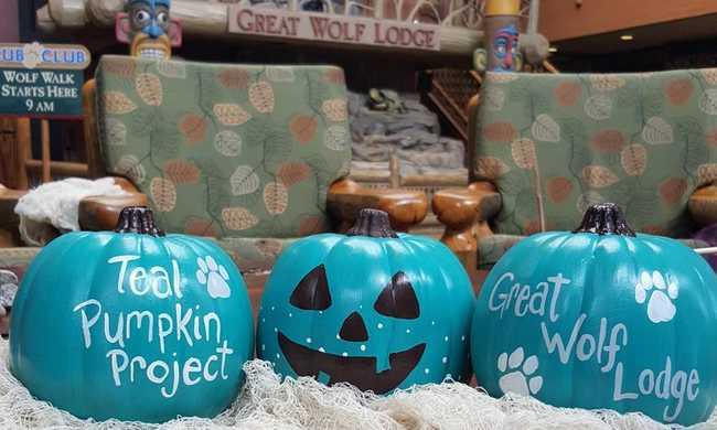 Kék sütőtök Halloween-ra. Miért?