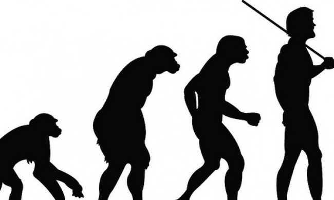 5 tévhit az evolúcióról