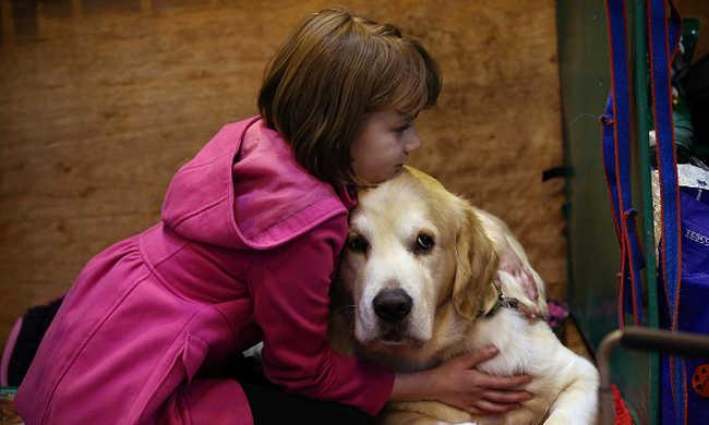 Az állatok megvédenek az asztmától