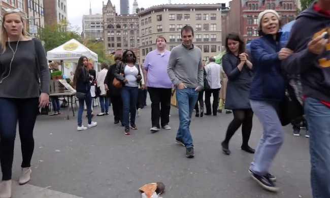 Pizzát vonszoló műpatkány rémisztgeti az embereket az utcán - videó
