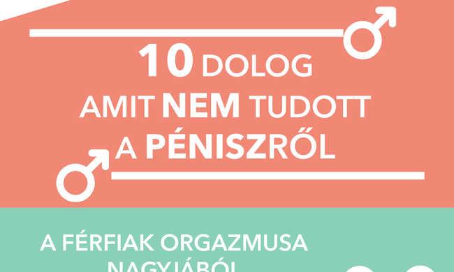 Tíz elképesztő tény a péniszről - grafikával
