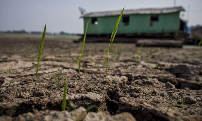 2016 lehet az eddigi legmelegebb év