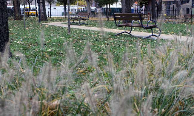 Szörnyű látvány Budapesten: halott emberre bukkantak a parkban
