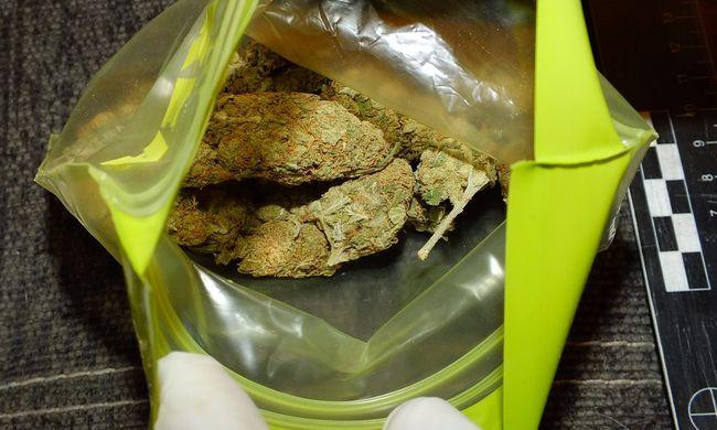 Kilenc kiló drog volt a debreceni kereskedőnél