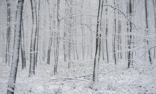 Szilveszterkor jön a hideg, újévkor a havazás