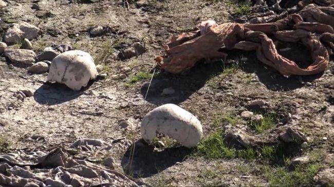 Nők és gyerekek tömegsírját találták meg