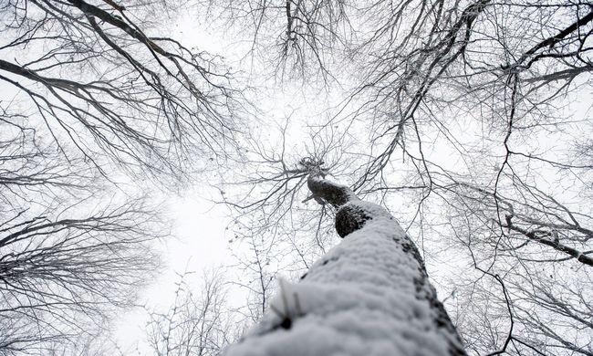 Ónos eső és havazás, aztán jön a meleg - videók