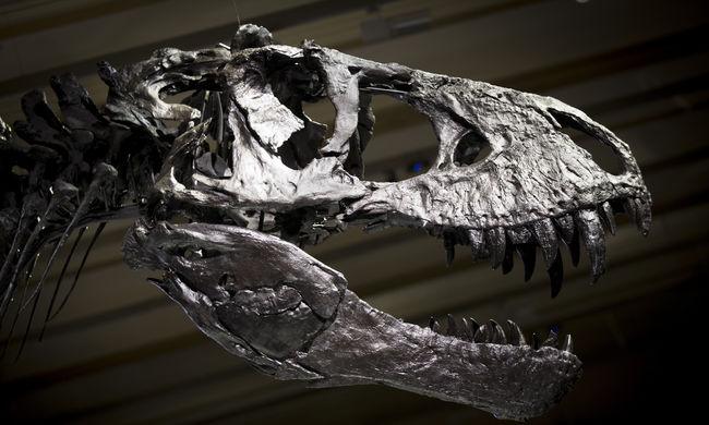 Nyáron dinoszauruszok lepik el Veszprémet