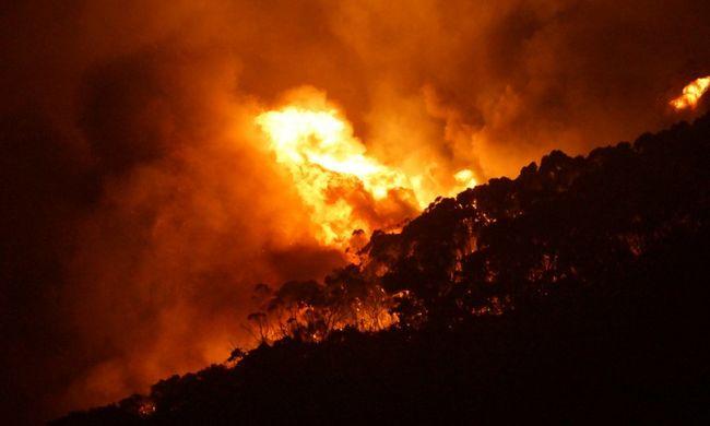 Száz házat pusztított el a tűz Ausztráliában