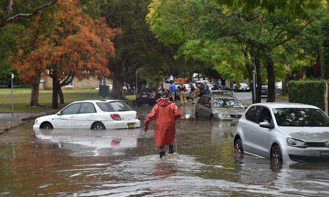 Krokodilok lepték el az utcákat az árvízben