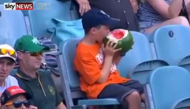 Héjastul megevett egy görögdinnyét, most ő 2016 első internetes sztárja