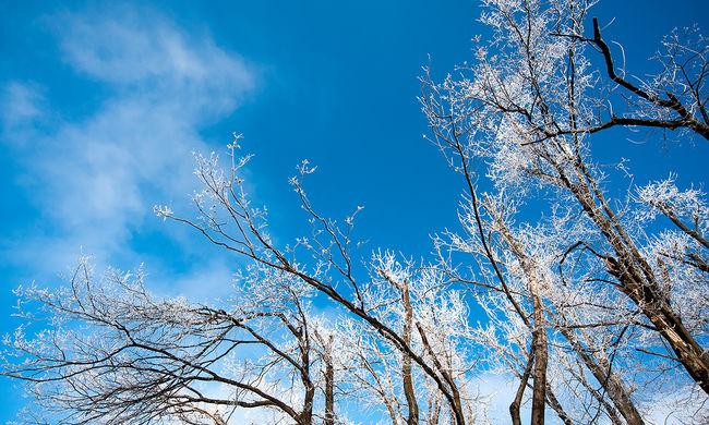 Több ezer lakás maradt áram nélkül a hó miatt