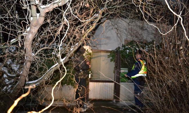 Több mint féltucat házba tört be