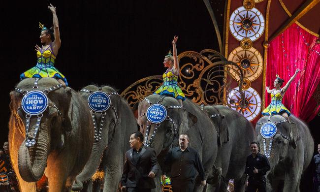 Jövőre már nem lesznek elefántok a nagy amerikai cirkuszokban