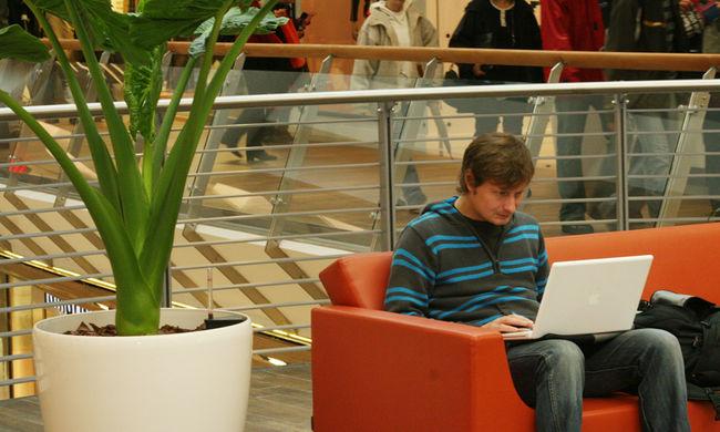 A magyar fiatalok negyede nem tudja, mi törvénytelen az interneten