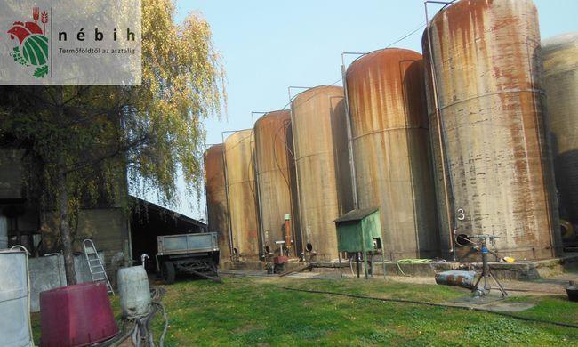 13 ezer liter hamis és fogyaszthatatlan bort zárolt a NÉBIH - videó