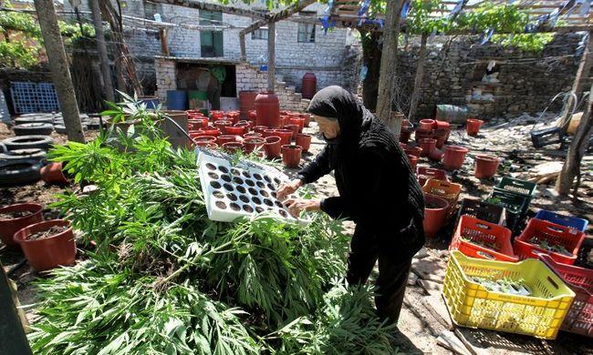Európai droghálózatból pénzelik az Iszlám Államot