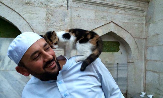 Kóbor macskákat fogadott be egy mecset