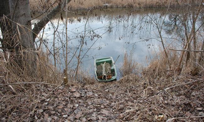 Csónakkal ment fát lopni két fiú