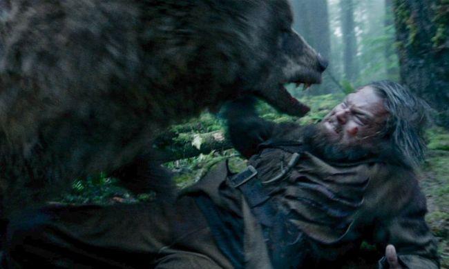 Egy kanadai férfi volt a medve, amely majdnem megölte DiCapriót