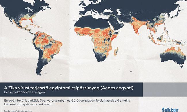 Veszélyben a terhesek, Magyarországra is eljuthat a vírus