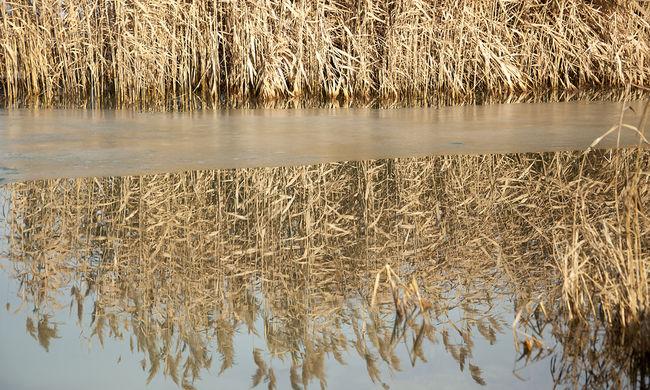 Továbbra is nagy gond a Balaton magas vízszintje