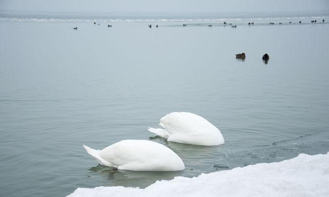 Olvad a jég a Balatonon - képgaléria