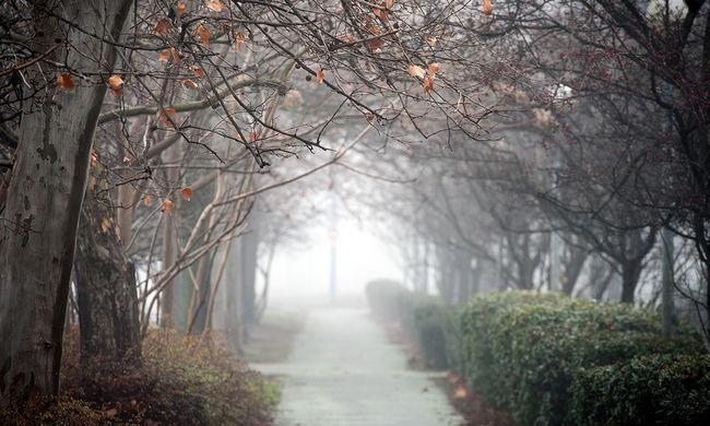 Vészjelzés a köd miatt, jön a havazás