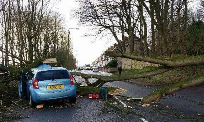 Nem segítettek a fa alá szorult autó utasain, inkább fotózták őket