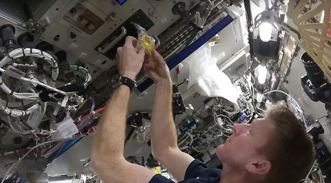 Így készül a rántotta az űrben - videó