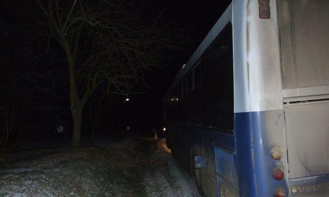 Több száz liter gázolajat loptak buszokból - fotók