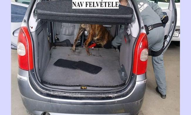 Lebuktatta a kábítószercsempészt a kutya