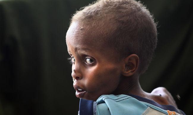 58 ezer gyerek halhat éhen