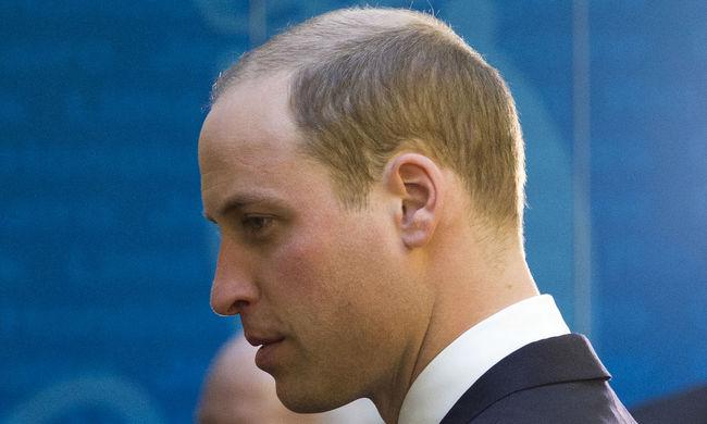 Vilmos herceg Nagy-Britannia EU-tagsága mellett