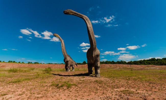 Már a dinoszauruszok idején megkezdődött az emlősök felemelkedése, nemcsak a kihalásuk után