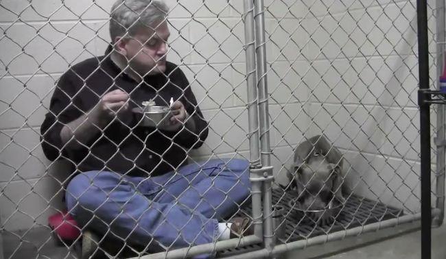 Kutyatálból reggelizett az állatorvos, hogy segítsen egy kidobott kutyán - videó