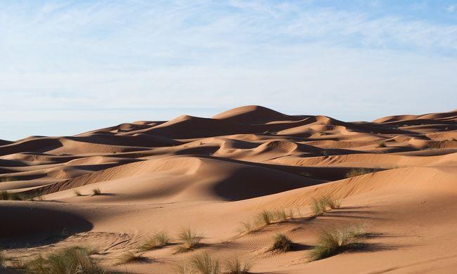 Borzalom a sivatagban, egy gyerek holttestére bukkantak