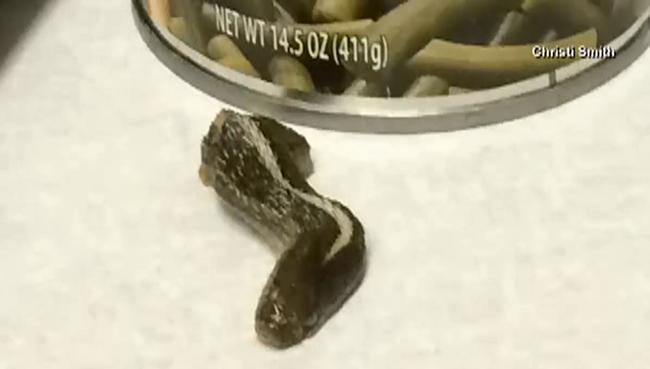 Levágott kígyófejet talált a konzervben egy nő - videó
