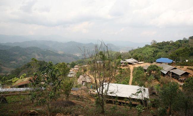 Saját kávét forgalmaz a kis falu - egyre több a pénzük
