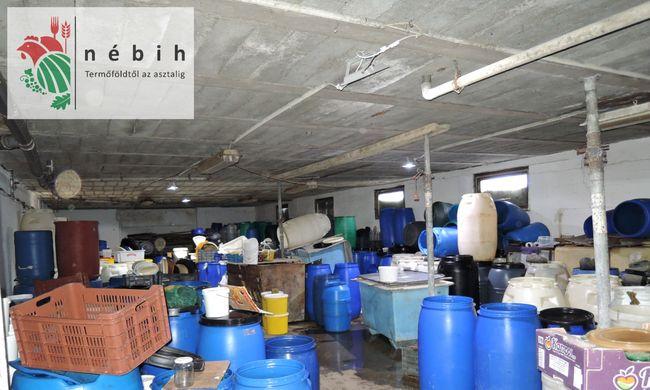 38 tonna penészes és jelöletlen ételt foglaltak le egy kistermelőnél